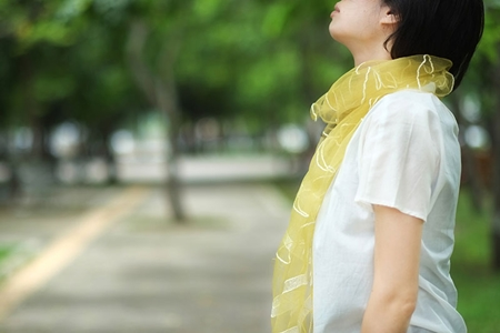 烏干紗絲巾(福木)