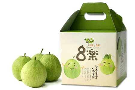 彰化社頭【珍珠芭樂】5斤禮盒裝